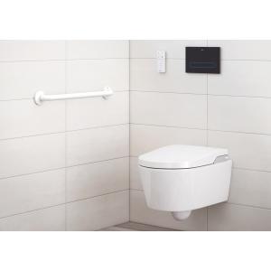 Поручень Roca Access Comfort 816904009