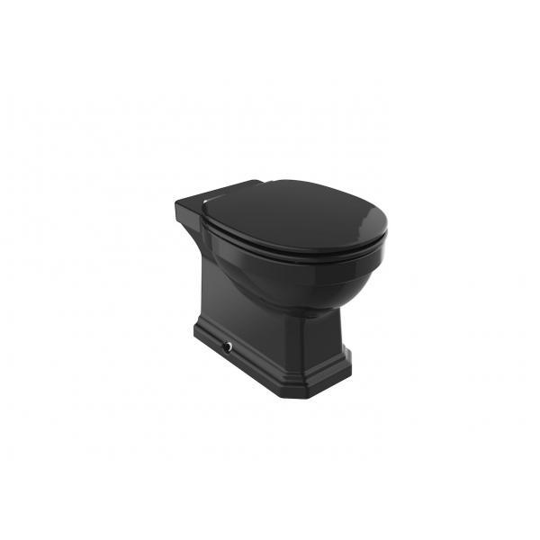 Чаша унитаза Roca Carmen Rimless приставная, черная 3440A9560